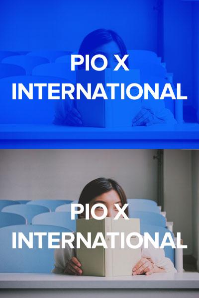 pulsante_international